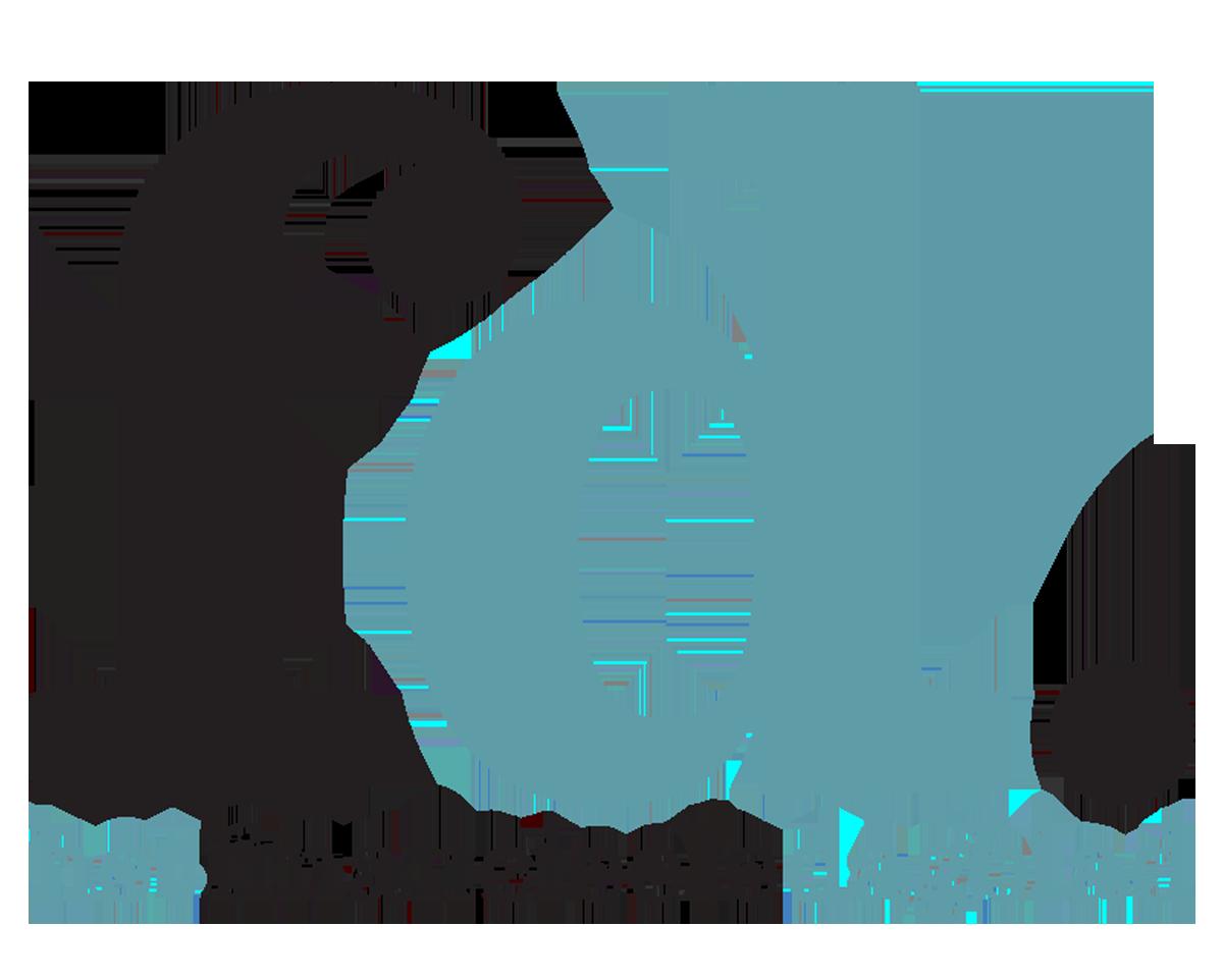 FD logo2